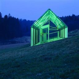01_green_treefrog__scaled_512